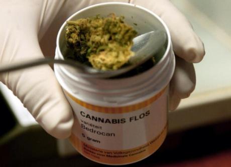 cannabis_uso_medico