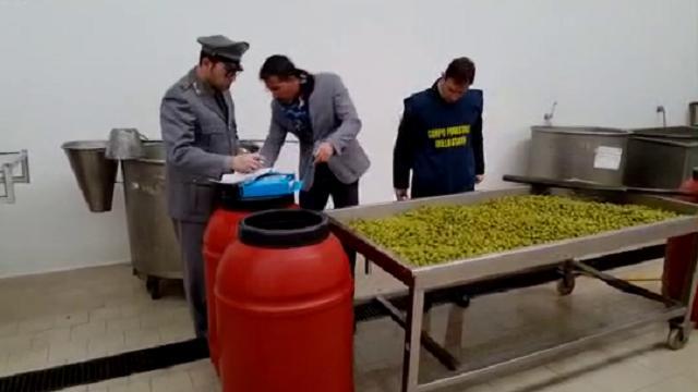 300880-thumb-full-video_olive_03022016