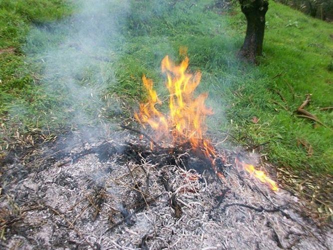 falò fuoco sfalci potature-2