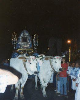 Festa Maggiore 1992 Terlizzi - la prima sfilata del nuovo carro trionfale (5)