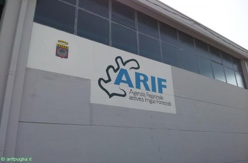 rsz_arif-500x330